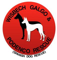 Wisbech Galgo and Podenco Rescue